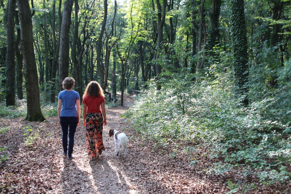 locaties-wandelcoaching-Arnhem-eo_IMG_6782_6x4